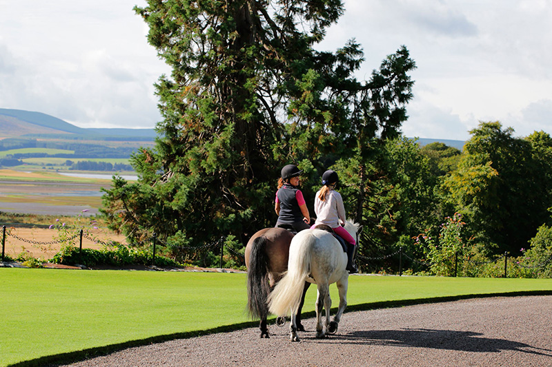 horses riding on Skibo Castle drive