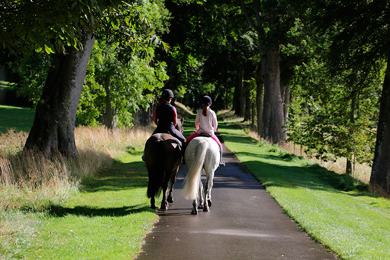 horse riding at Skibo